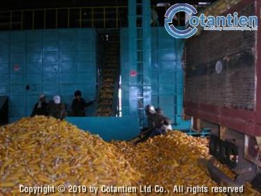 Dây chuyền sấy bắp giống 6 – 7 tấn hạt/ngày